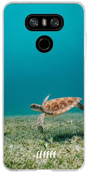 Turtle G6