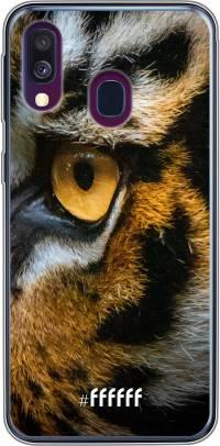 Tiger Galaxy A50