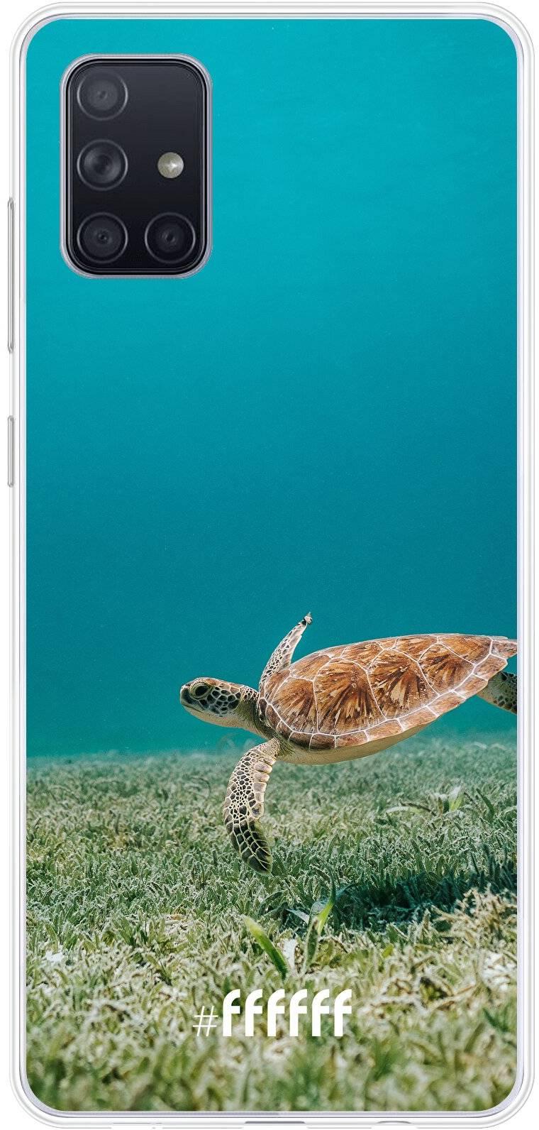 Turtle Galaxy A71