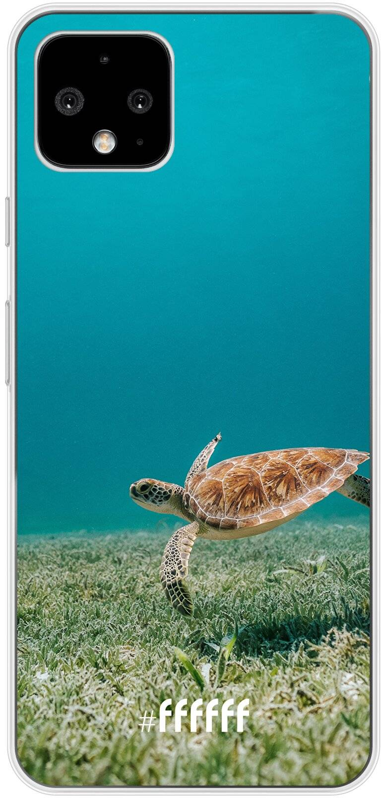 Turtle Pixel 4