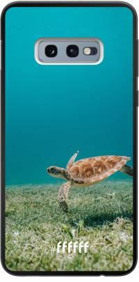 Turtle Galaxy S10e