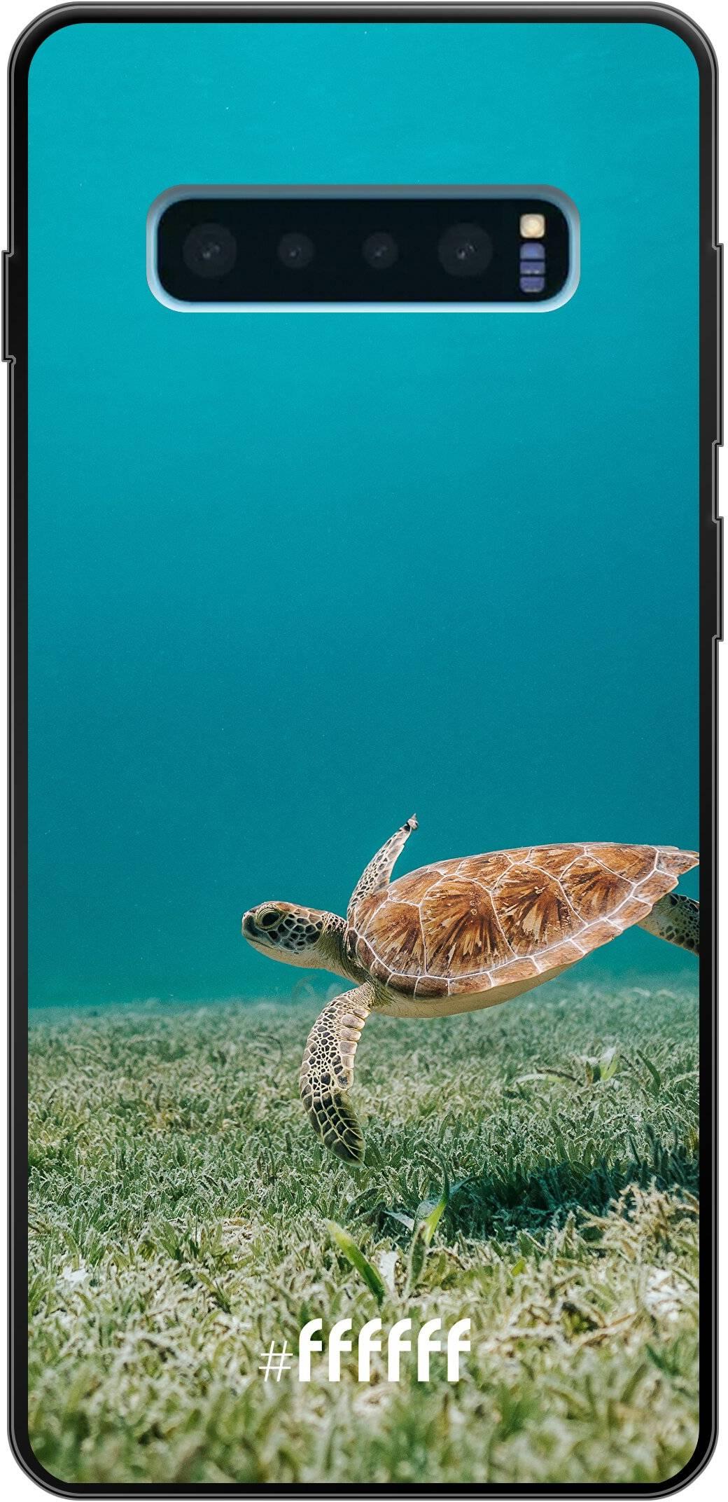 Turtle Galaxy S10 Plus