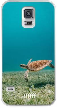 Turtle Galaxy S5