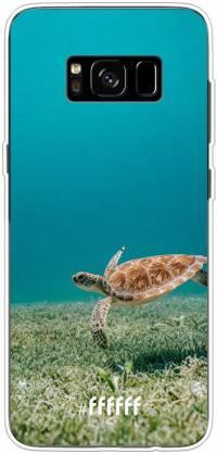 Turtle Galaxy S8 Plus
