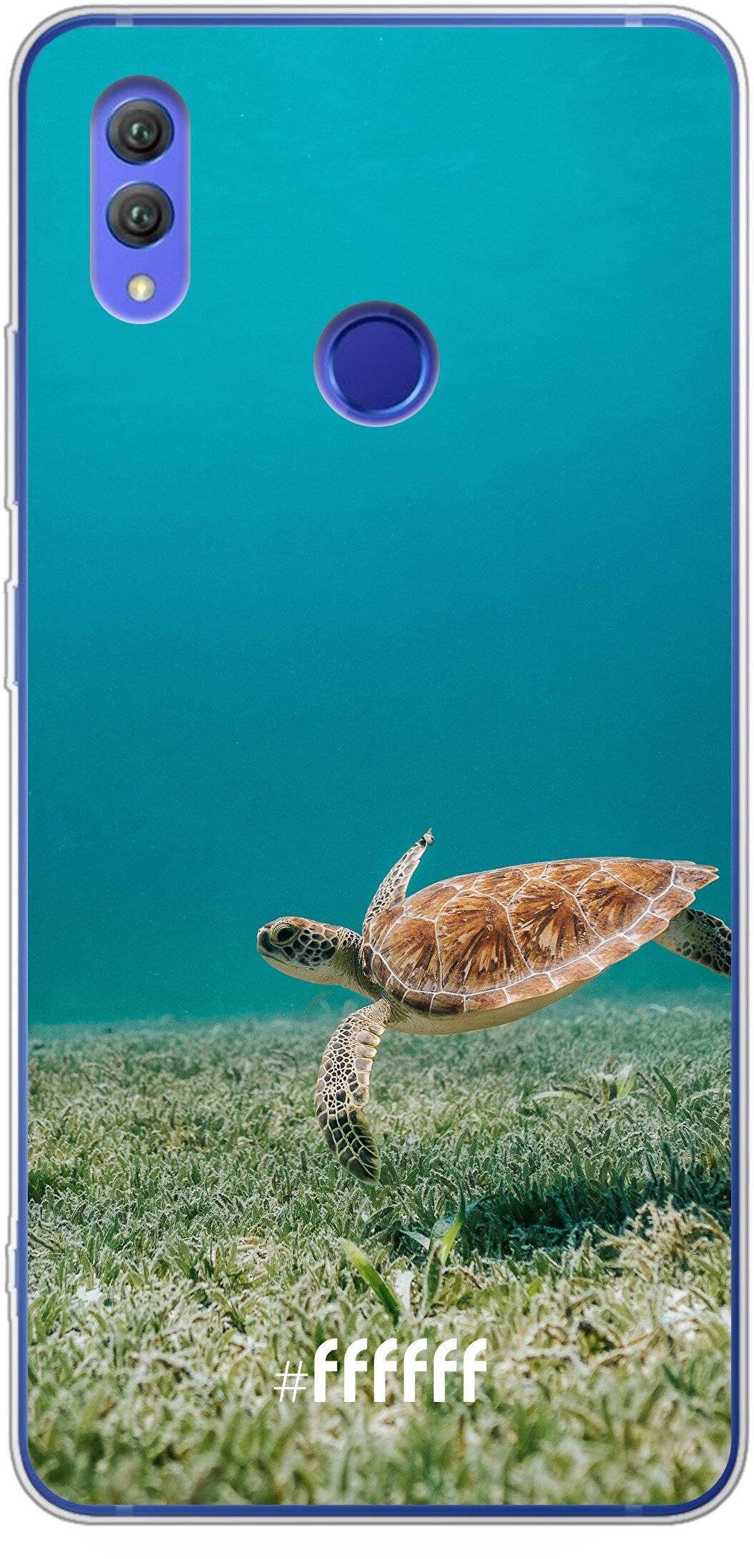 Turtle Note 10
