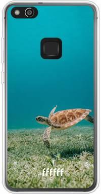 Turtle P10 Lite