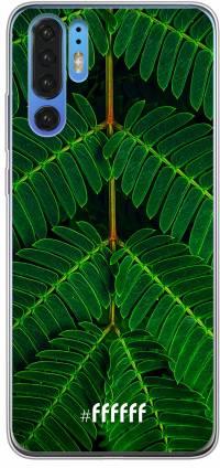 Symmetric Plants