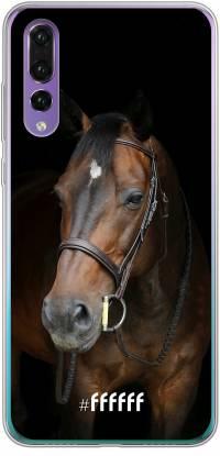 Horse P30