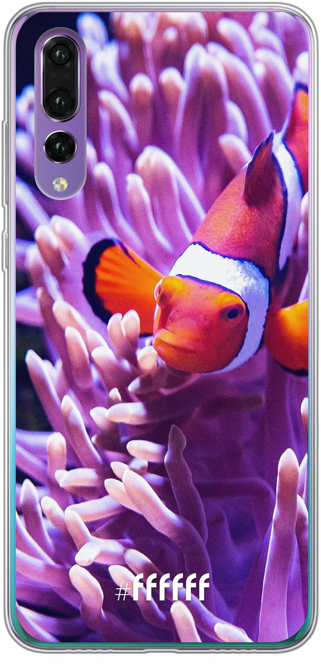 Nemo P30