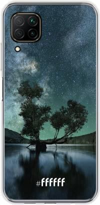 Space Tree P40 Lite