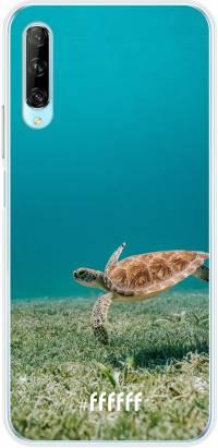 Turtle P Smart Pro