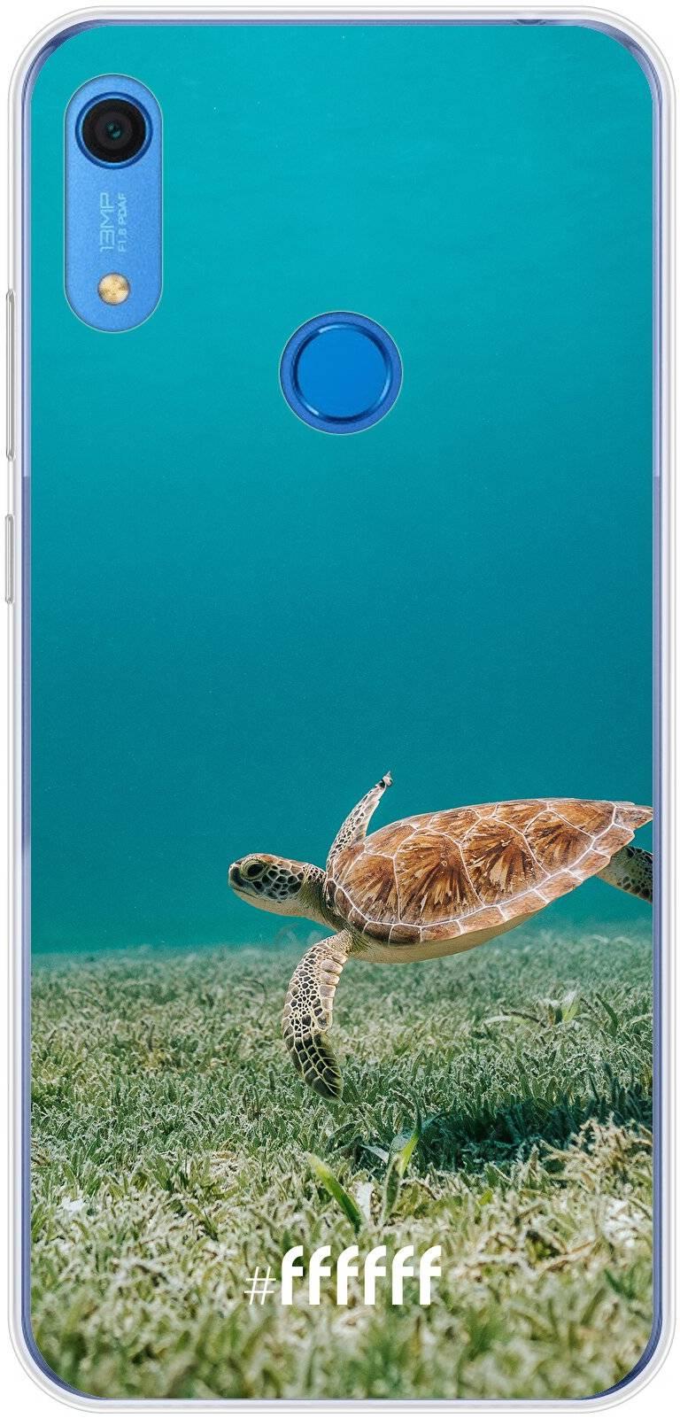 Turtle Y6s