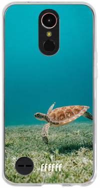 Turtle K10 (2017)