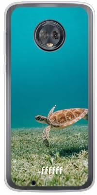 Turtle Moto G6