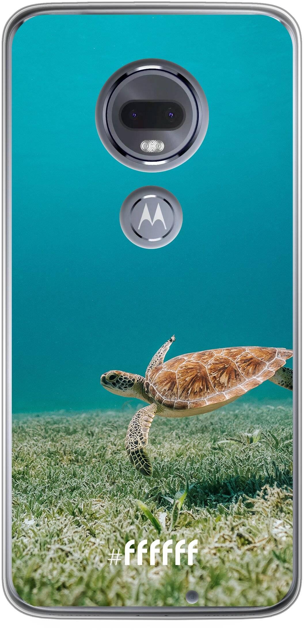 Turtle Moto G7