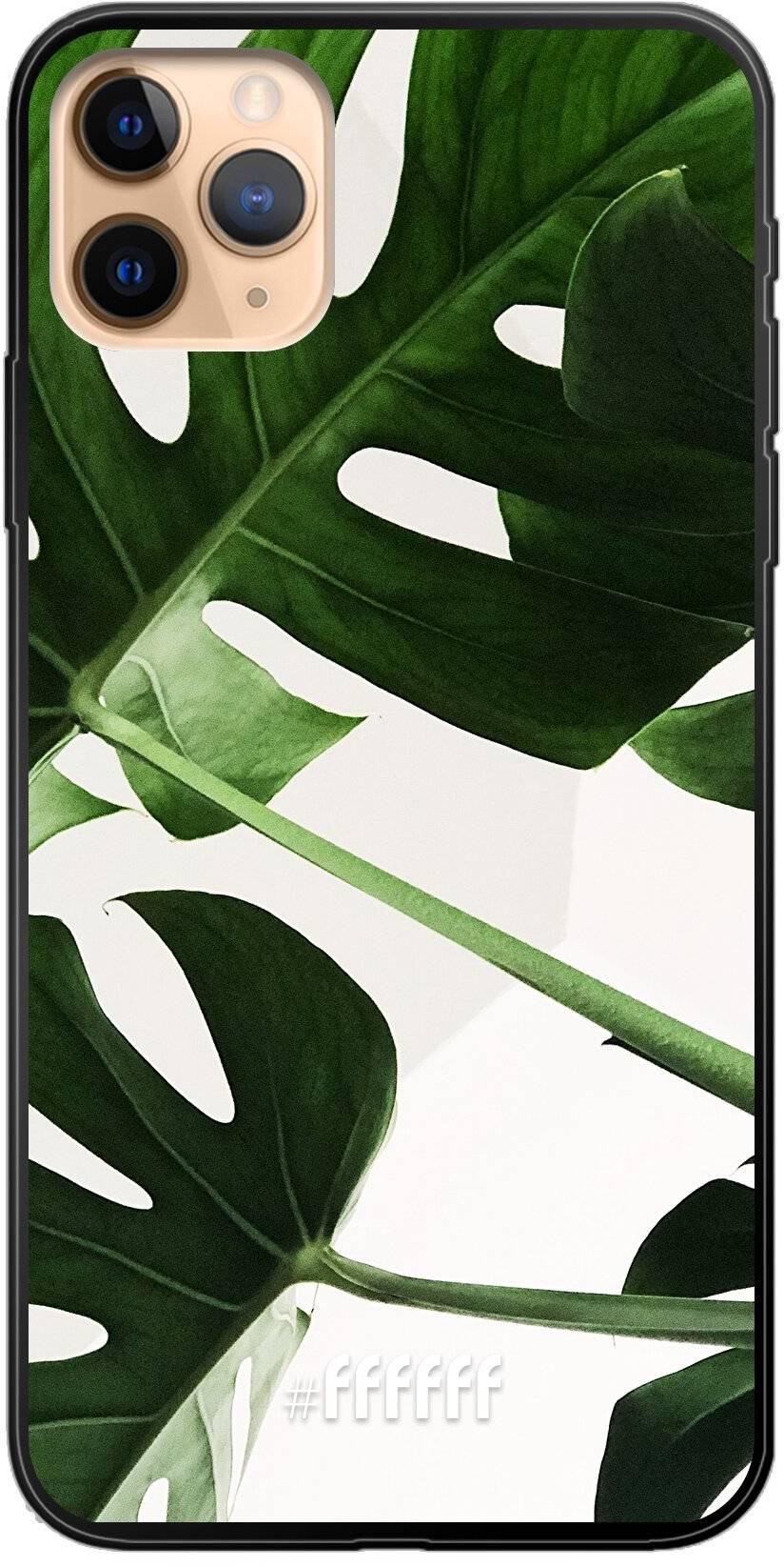 Tropical Plants iPhone 11 Pro Max