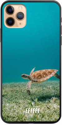 Turtle iPhone 11 Pro Max