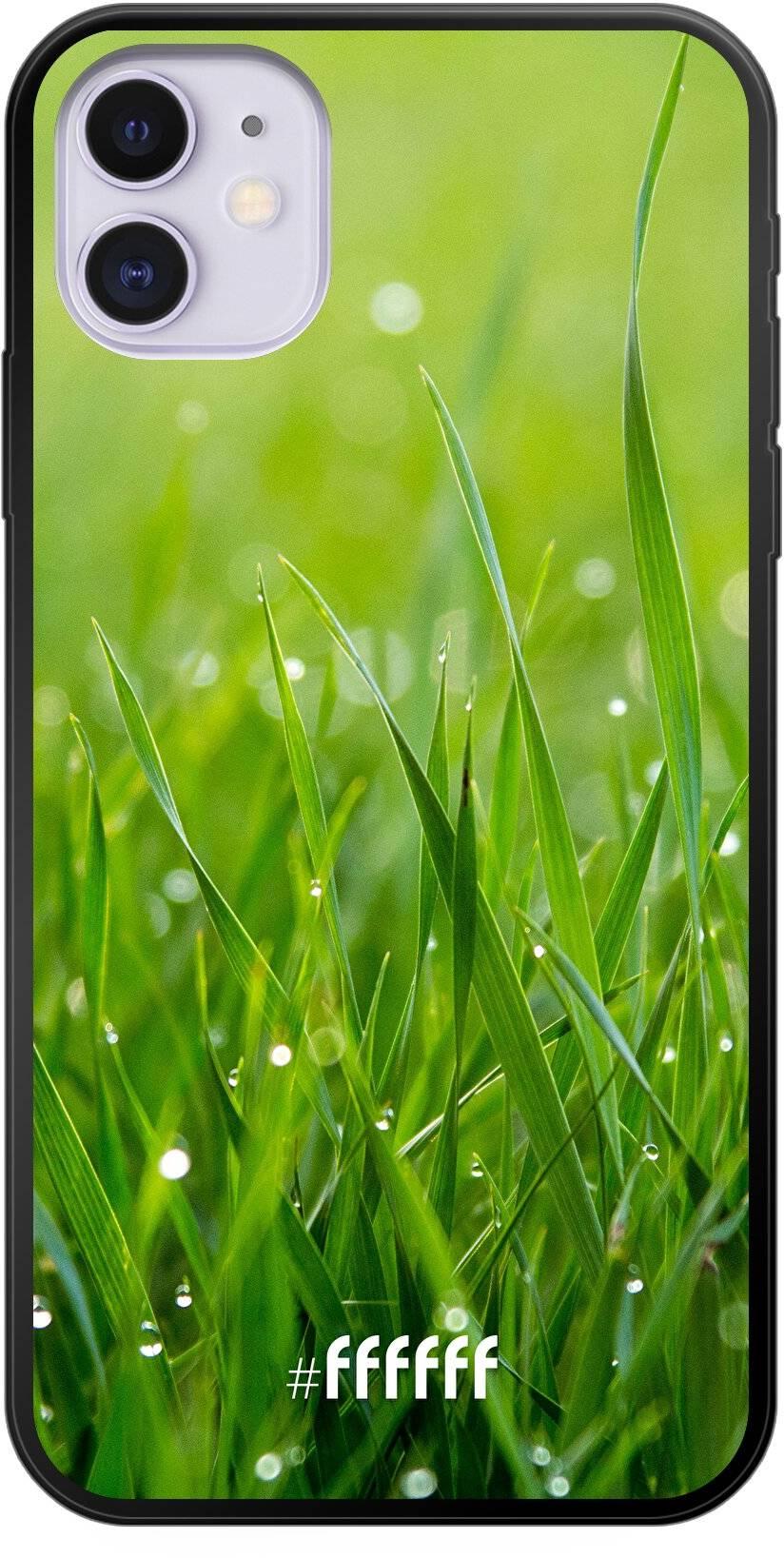 Morning Dew iPhone 11