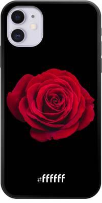 Radiant Rose iPhone 11