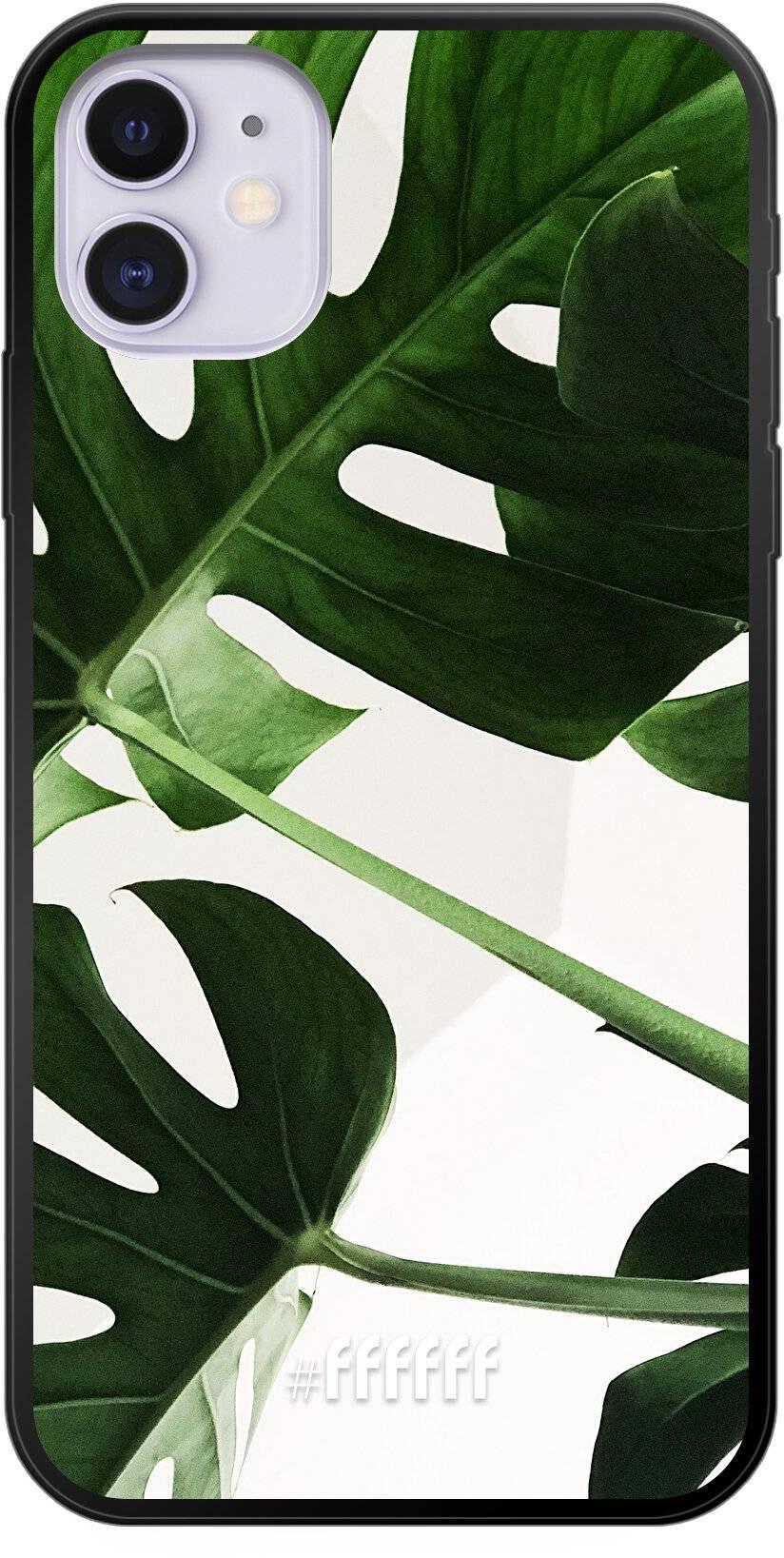 Tropical Plants iPhone 11
