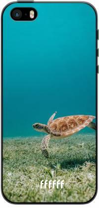 Turtle iPhone 5s