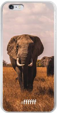 Elephants iPhone 6 Plus
