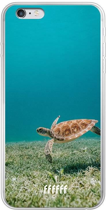 Turtle iPhone 6 Plus