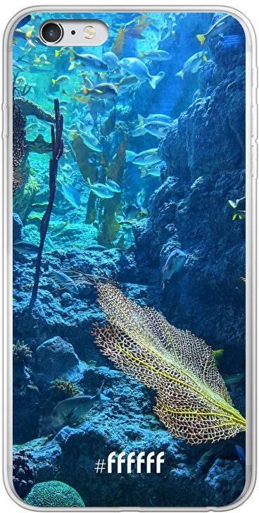 Coral Reef iPhone 6s Plus