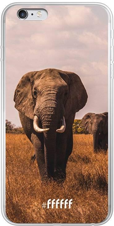 Elephants iPhone 6s Plus