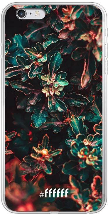 Ornament iPhone 6s Plus