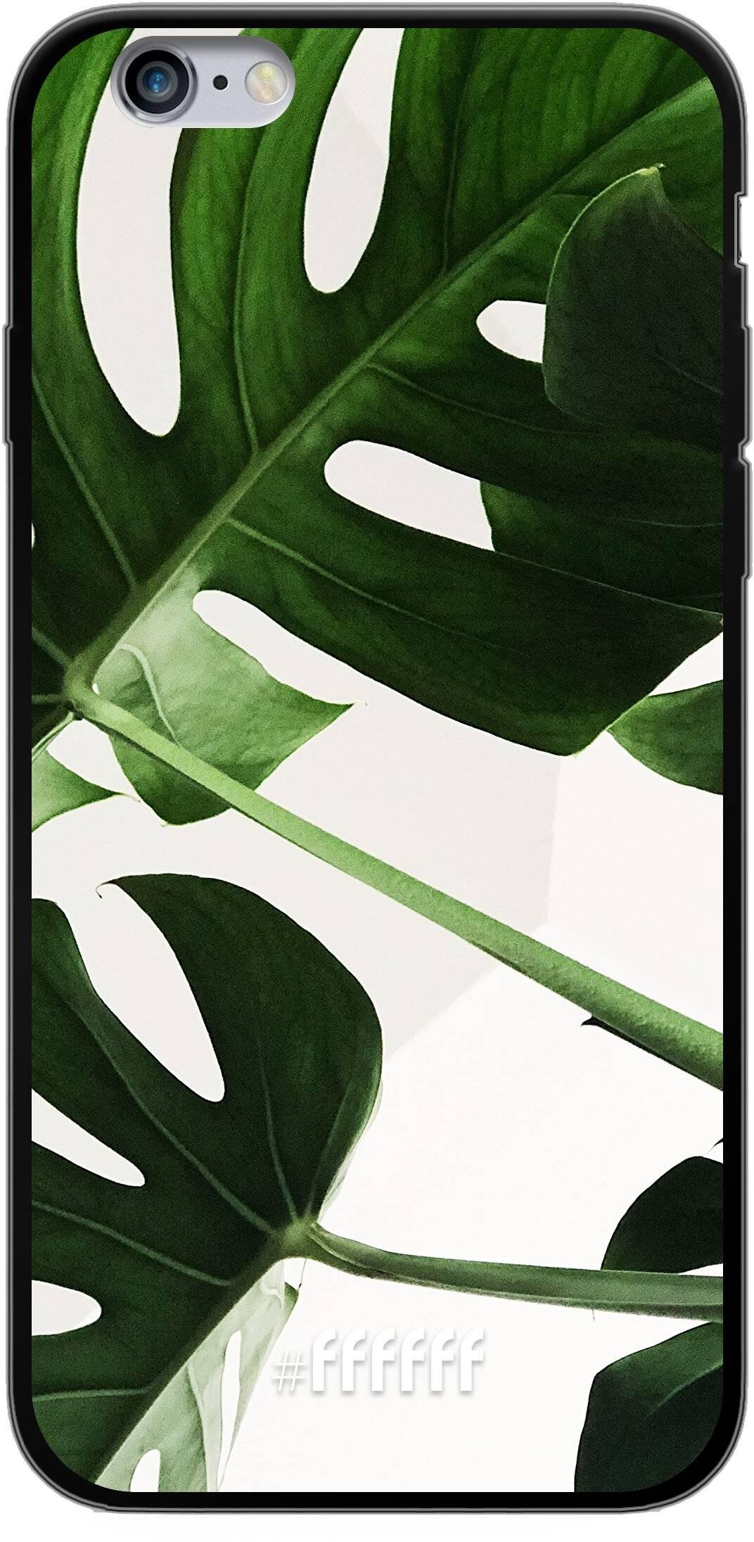 Tropical Plants iPhone 6s