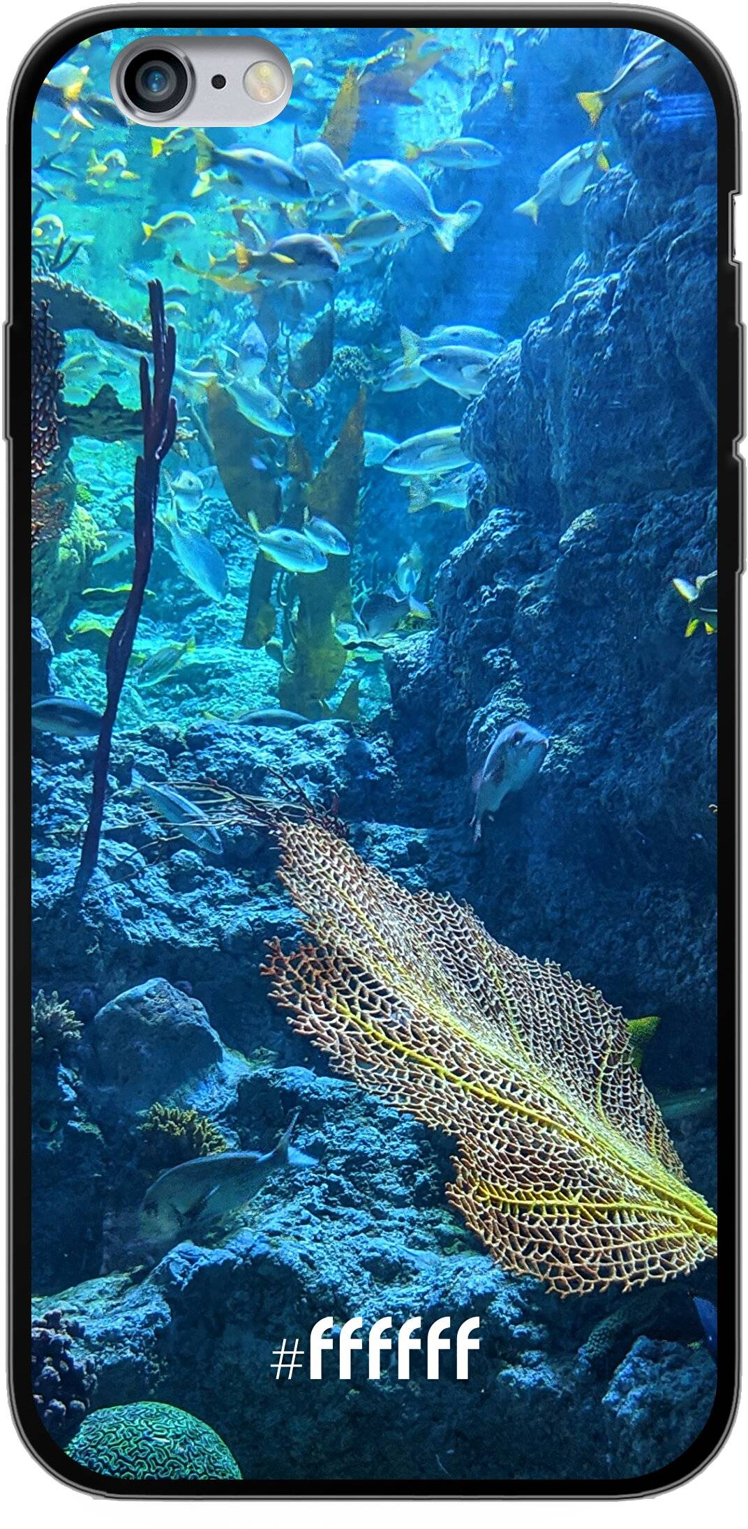 Coral Reef iPhone 6