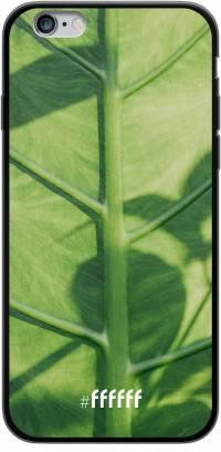 Leaves Macro iPhone 6