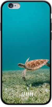 Turtle iPhone 6