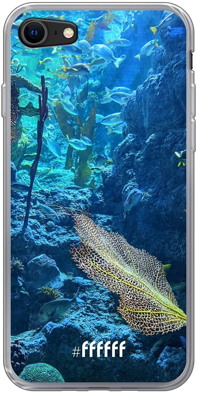 Coral Reef iPhone 8