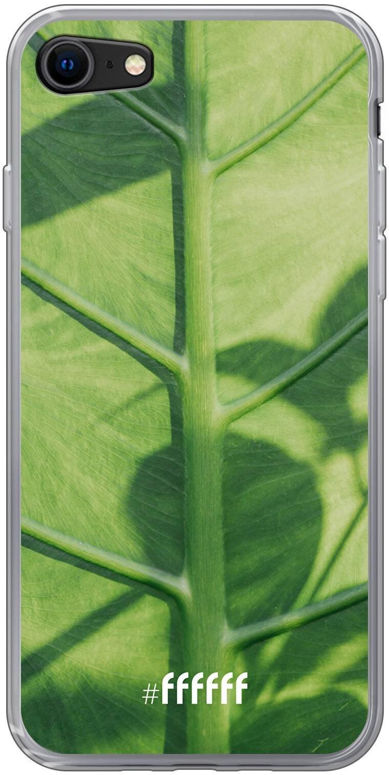 Leaves Macro iPhone 8