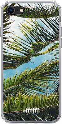 Palms iPhone 8