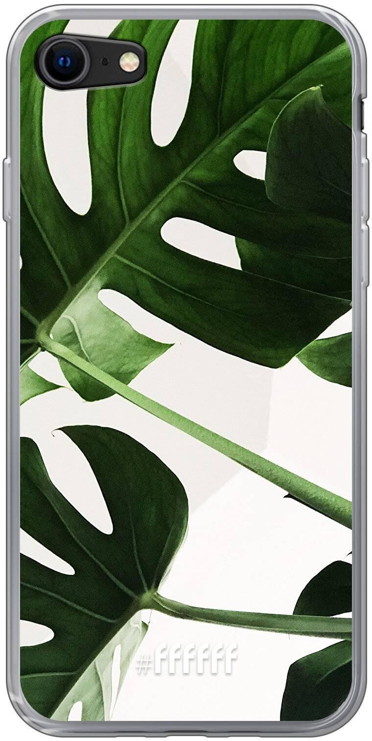 Tropical Plants iPhone 8
