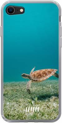 Turtle iPhone 8