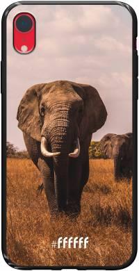 Elephants iPhone Xr
