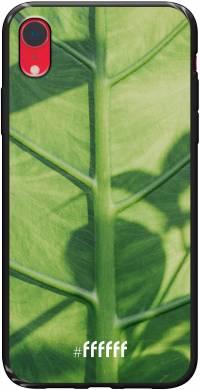 Leaves Macro iPhone Xr