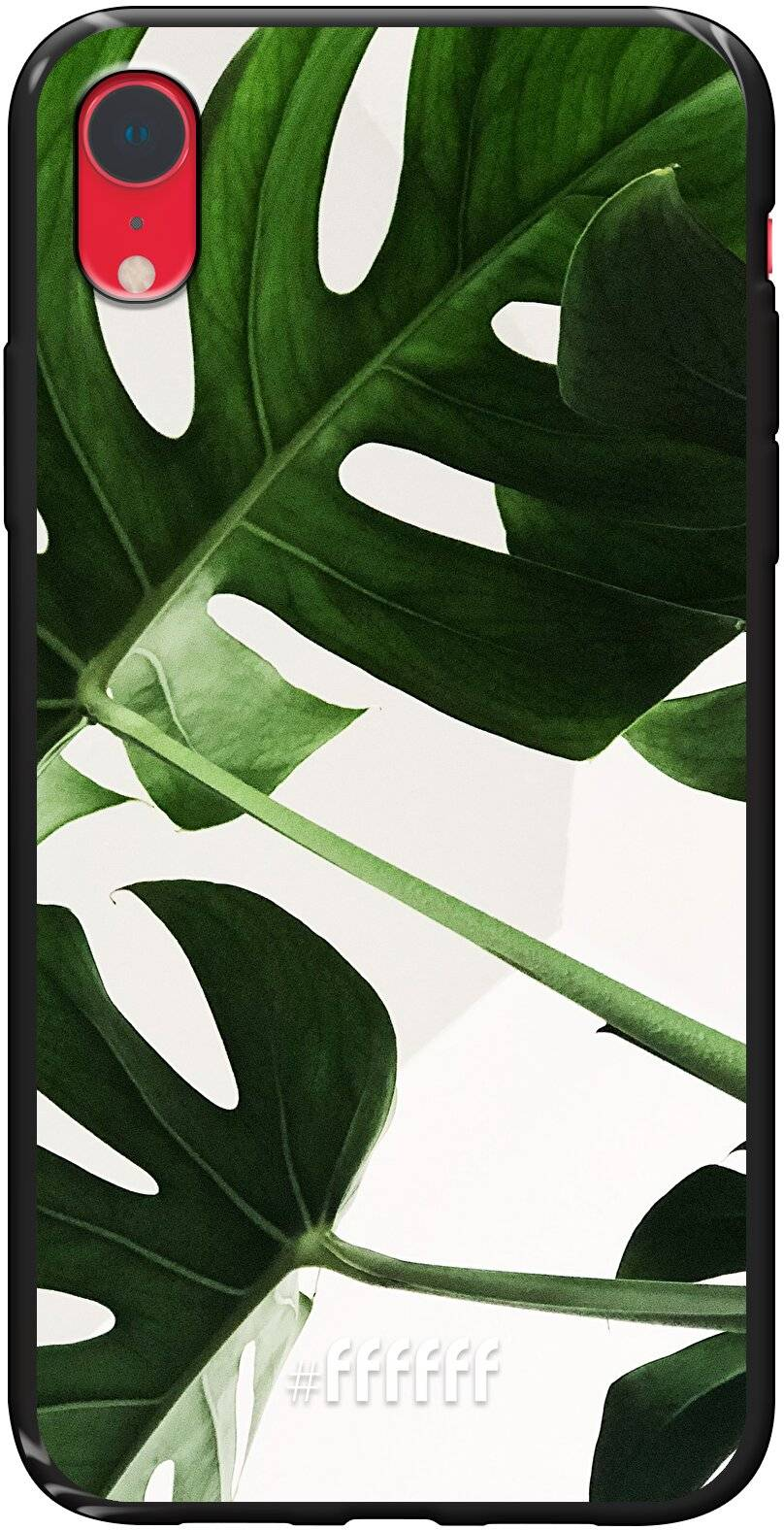 Tropical Plants iPhone Xr