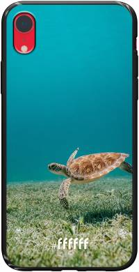 Turtle iPhone Xr