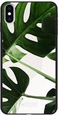 Tropical Plants iPhone Xs Max