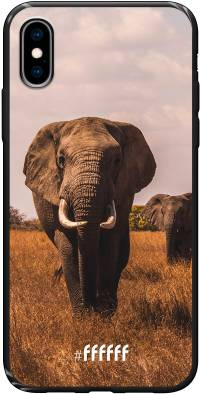 Elephants iPhone Xs