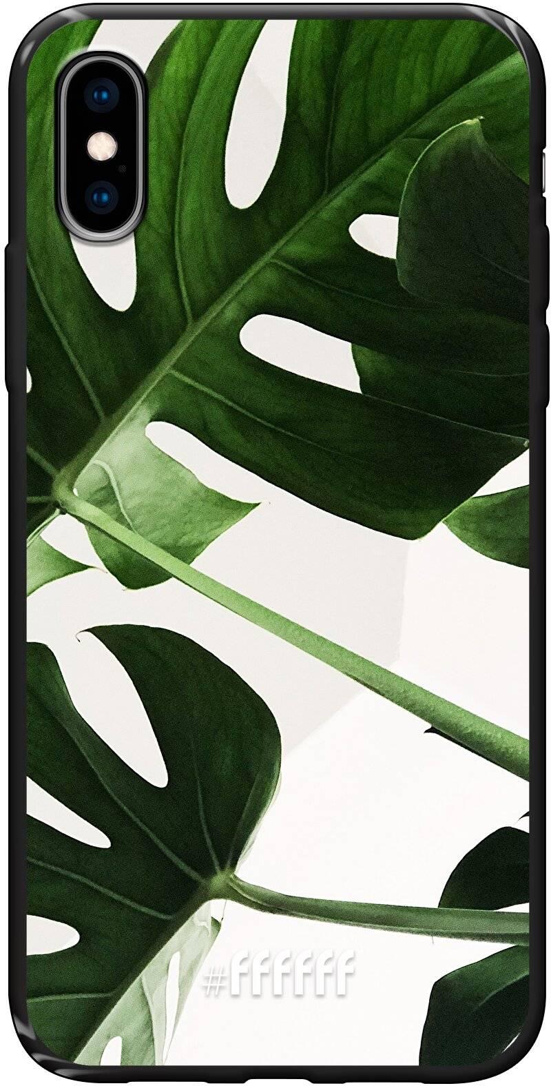 Tropical Plants iPhone Xs