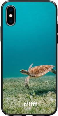 Turtle iPhone X