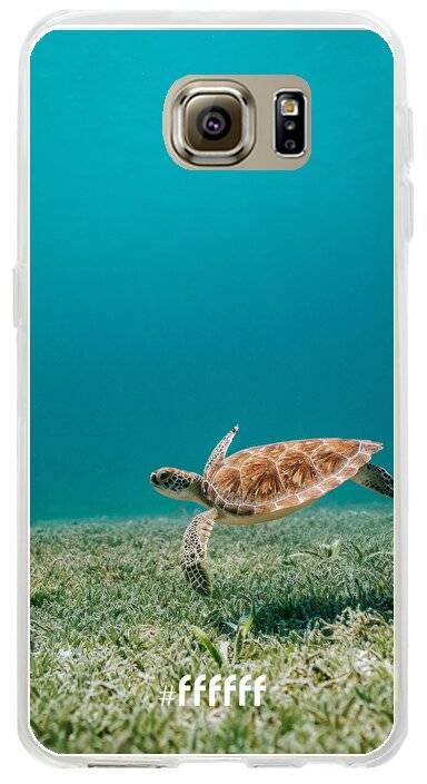 Turtle Galaxy S6