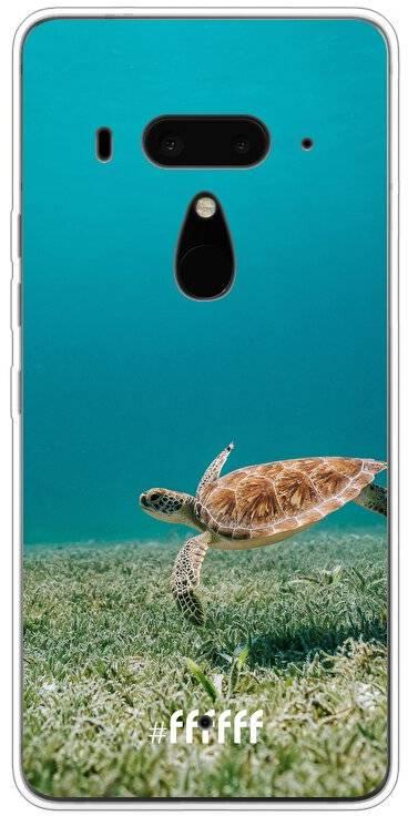 Turtle U12+