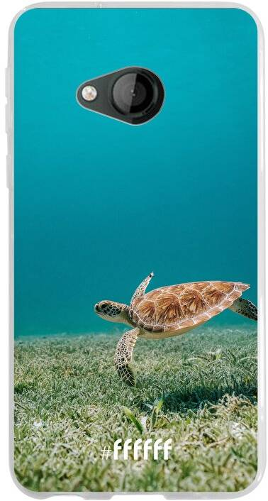 Turtle U Play
